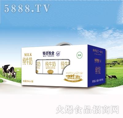 特圣牧业纯牛奶250mlx12盒