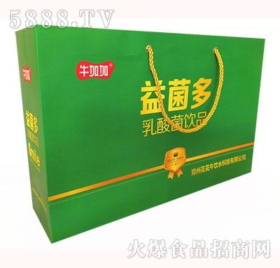 牛加加益菌多乳酸菌饮品礼盒装