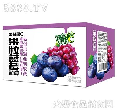 果益果C果粒蓝莓葡萄果汁500mlx15