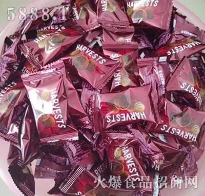 哈时巧克力红产品图
