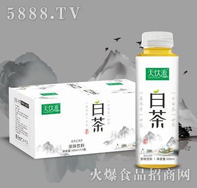 天饮源白茶茶味饮料500mlx15瓶