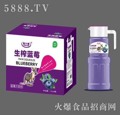 粒汁健生榨蓝莓汁1.5LX6
