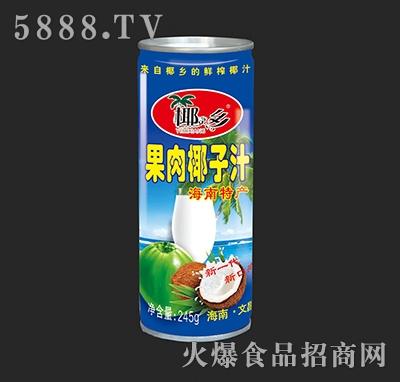 椰之乡铁罐果肉椰子汁245g