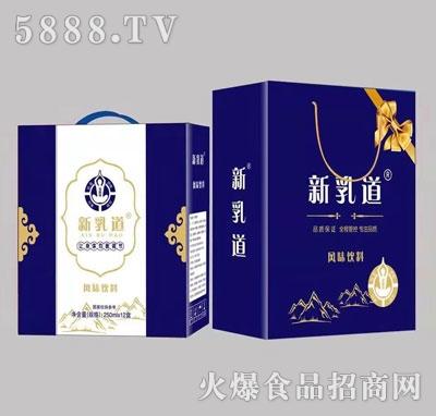 新乳道风味饮料250mlX12