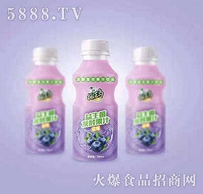 椰汁岛益生菌发酵蓝莓果汁340ml