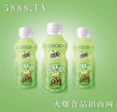 椰汁岛益生菌发酵奇异果果汁340ml