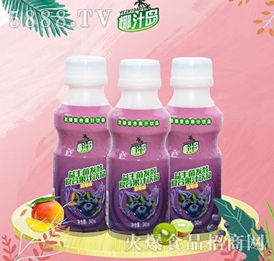 椰汁岛益生菌发酵蓝莓味果汁340ml