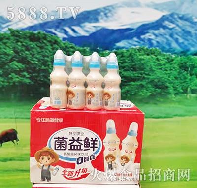 特圣牧�I菌益�r乳酸菌�L味�品200mlx24瓶