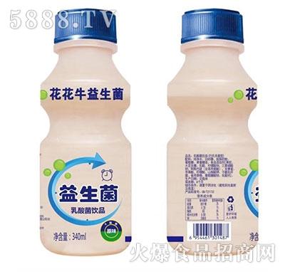 花花牛益生菌乳酸菌饮品340ml瓶装