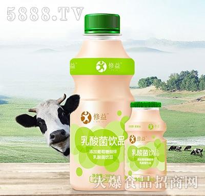 修益乳酸菌饮品360ml