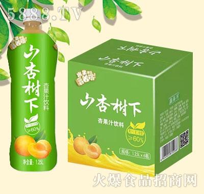 山杏树下杏果汁饮料1.25Lx6