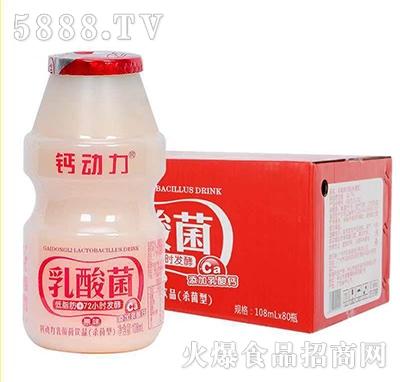 钙动力乳酸菌108mlx80