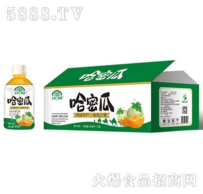 玉川果园哈密瓜汁280mlx15