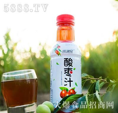 珊瑚泉酸枣汁果汁饮料430ml