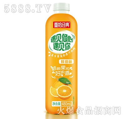 重拾经典益生菌鲜橙汁480ml