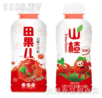 田果儿山楂果蔬汁饮料450ml