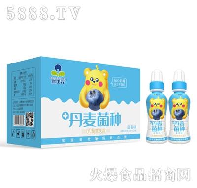 益正元乳酸菌饮品蓝莓味200mlX24