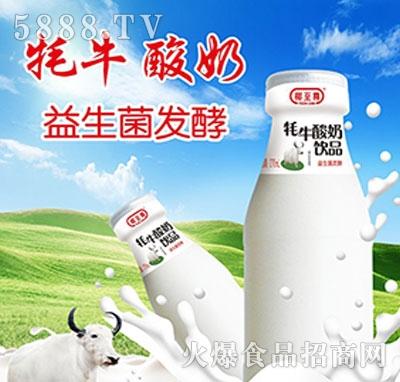 椰至尊水牛酸奶饮料
