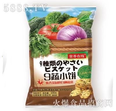 营养在线9蔬小饼100g