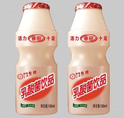 睿田乳酸菌饮品160ml