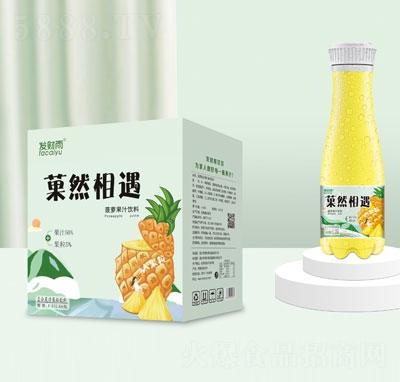 发财雨�然相遇大果粒菠萝果汁饮料1.25LX6