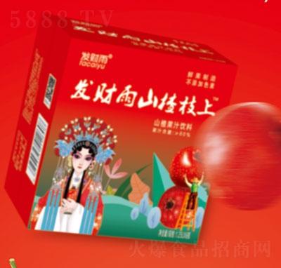 发财雨山楂枝上山楂果汁饮料1.25LX6瓶