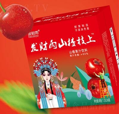 发财雨山楂枝上山楂果汁饮料1.25LX6