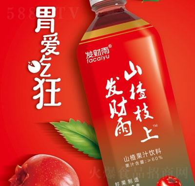 发财雨山楂枝上山楂果汁饮料1.25L