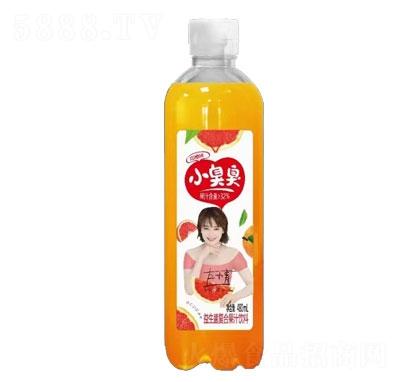 小臭臭益生菌复合果汁饮料血橙味480ml