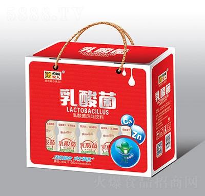 蓉城家人乳酸菌风味饮料340mlx10瓶