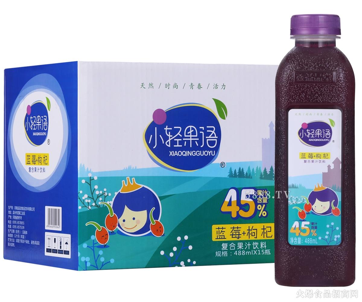 小轻果语蓝莓+枸杞复合果汁488mlx15瓶