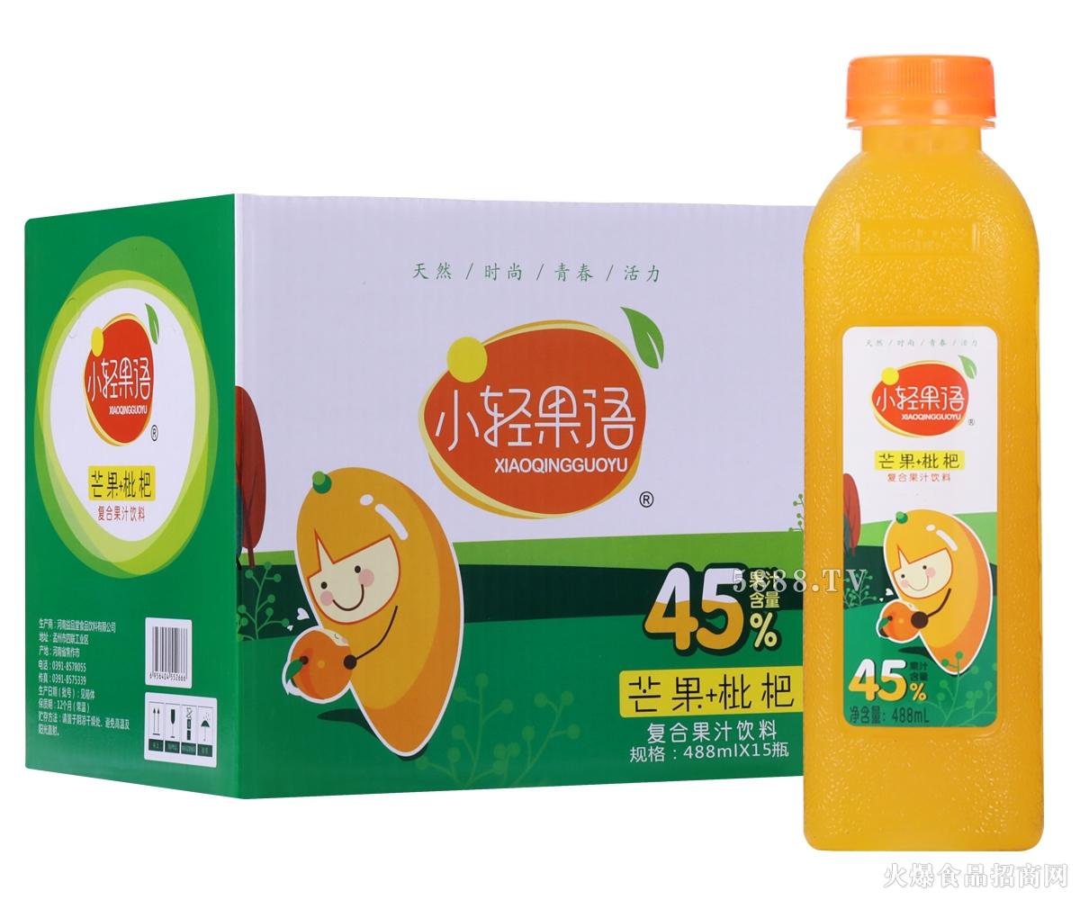 小轻果语芒果+枇杷复合果汁488mlx15瓶