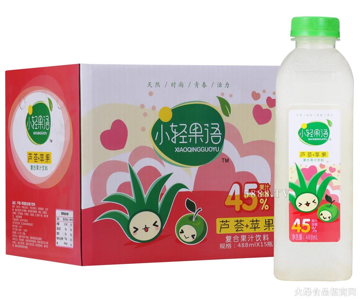 小轻果语芦荟+苹果复合果汁488mlx15瓶