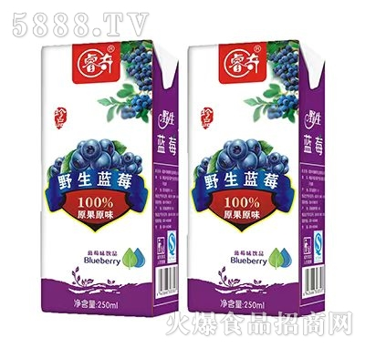 睿奇野生蓝莓果味饮品250ml