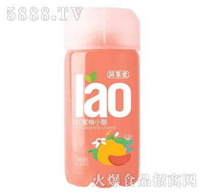 同聚堂红蜜柚小酪400ml×15瓶
