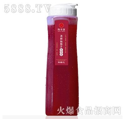 陶奉源冰鲜杨梅汁浓浆型1L