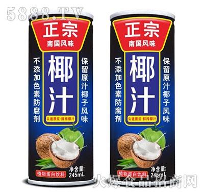 正宗椰汁植物蛋白饮料245ml