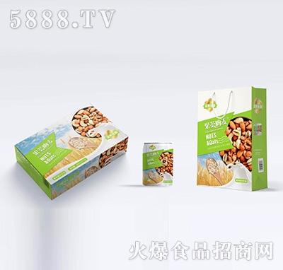 坚果智知果荟吻麦植物蛋白饮品240mlx16罐