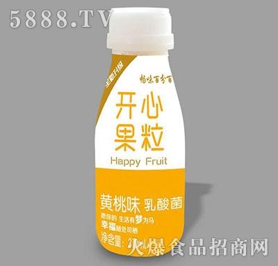 畅味百分百开心果粒乳酸菌黄桃味310ml