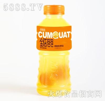 同聚堂金桔泡泡蜂蜜金桔水果饮品425mlX15瓶