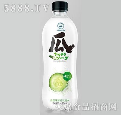 午后假期青瓜味苏打气泡水480ml