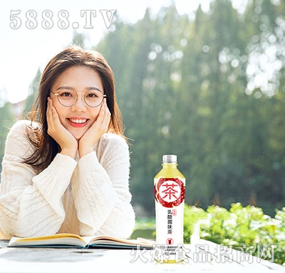天下水坊洛神石榴乳酸菌风味茶饮料450ml
