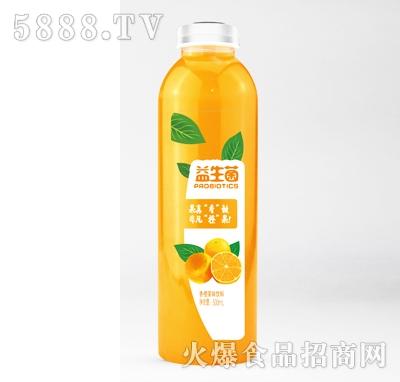 京智源益生菌香橙果味饮料500ml