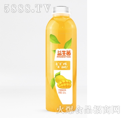 京智源益生菌芒果果味饮料500ml