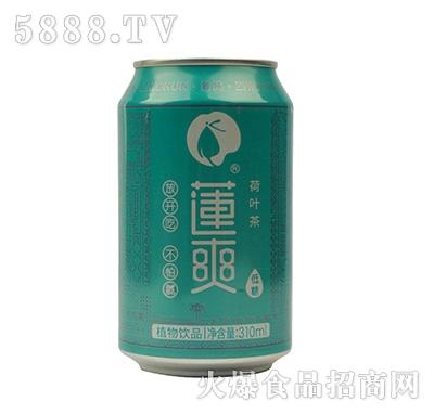 莲爽荷叶茶饮料310ml