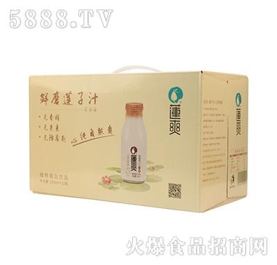 莲爽鲜磨莲子汁230mlx12瓶