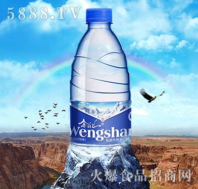 念翁山包装饮用水