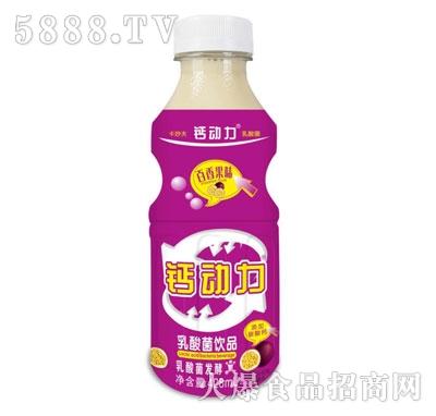 钙动力乳酸菌饮品百香果味428ml
