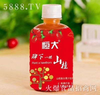 恒大山楂复合果汁饮料(瓶)