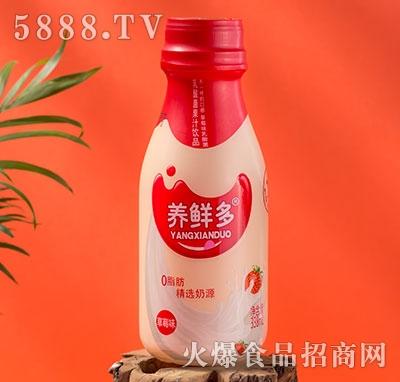 养鲜多乳酸菌果汁草莓味338ml